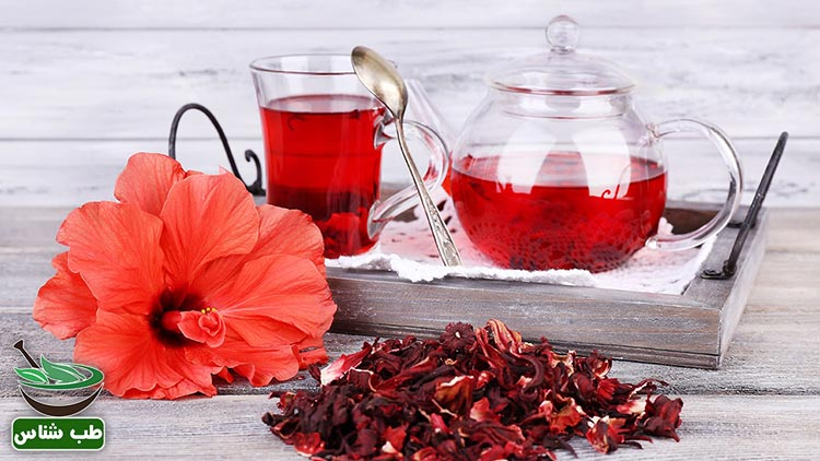 طبع و خواص-چای-ترش-در-طب-سنتی-ایرانی-اسلامی